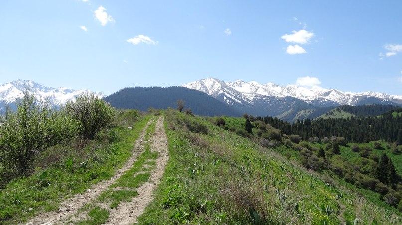 Дорога в скит св. Серафима и Феогноста.Аксайское ущелье