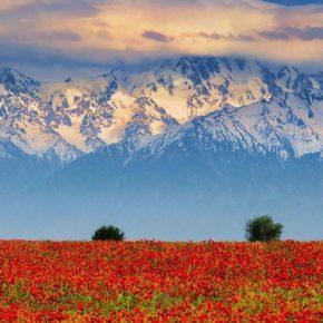 Казахстан. Алма -Ата и Караганда
