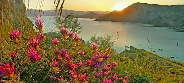 Царство весны. Майские праздники в Крыму