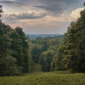Золотая осень на Дудергофских  высотах  9 октября