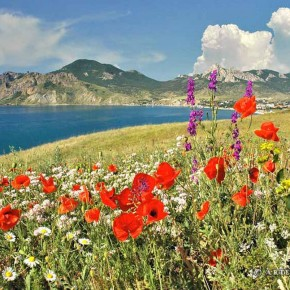 В Крым на праздники святителя Луки   и  св. равн. Константина и Елены 1 -12 июня